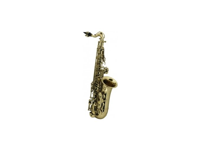 GEWA EB-ALTO-SAXOPHONE FOR CHILDREN ROY BENSON AS-201