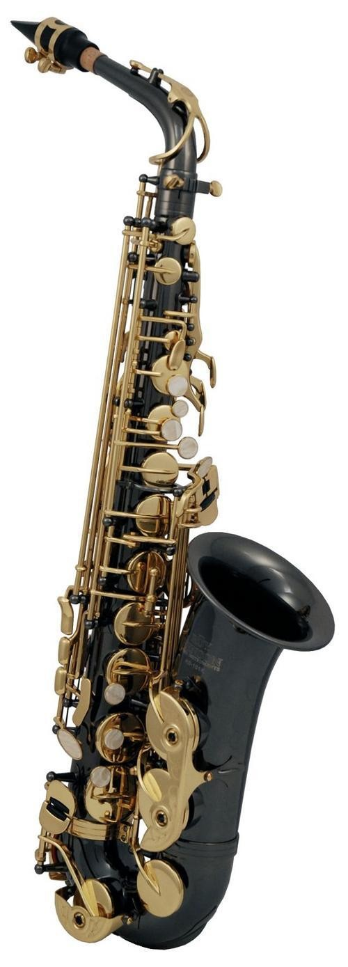 Eb-Alt Saxofon Roy Benson AS-202K